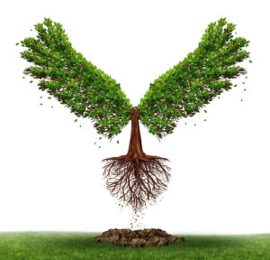 TREE WITH WINGS RISING OUT OF THE GROUND
